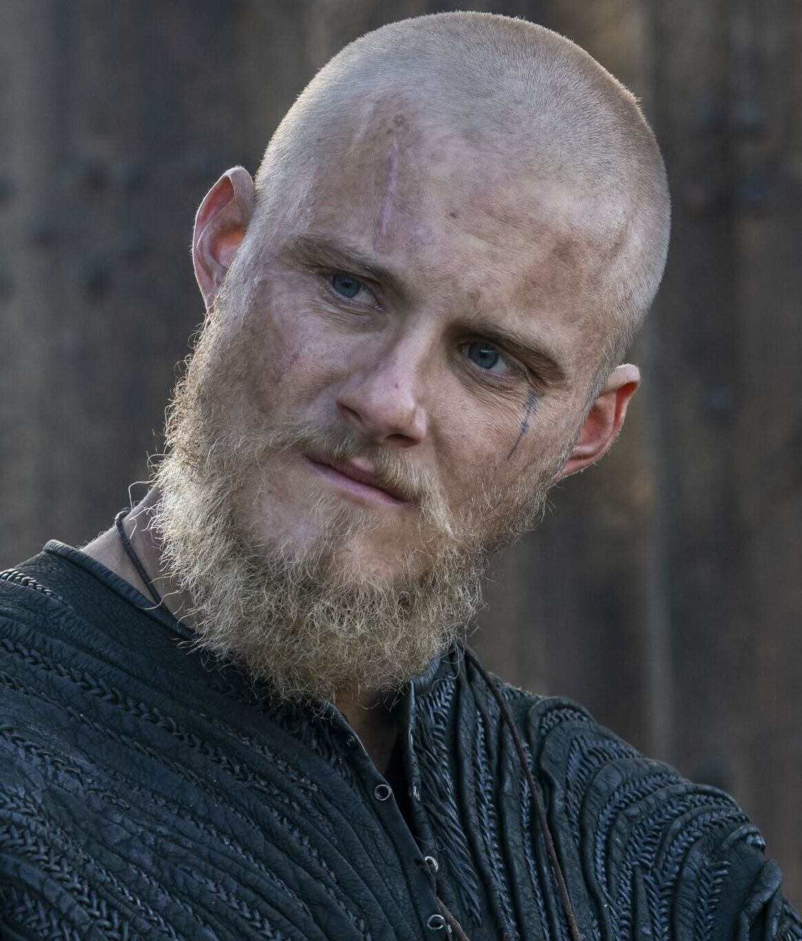 Bjorn Vikings Wiki Fandom