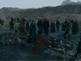 Icelandic Settlers