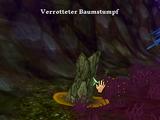 Schlammspringerkäfer