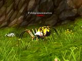 Feldspinnenmutter
