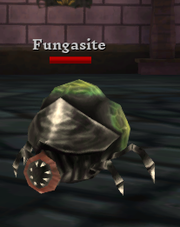 Fungasite.png