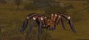 Hairy tarantula companion.png