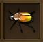 Sunback Beetle
