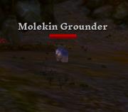 Molekin Grounder