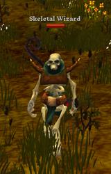 Skeletal Wizard