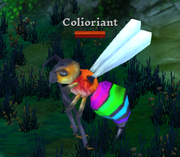 Coliorant.png