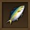 Bigbelly Hamachi