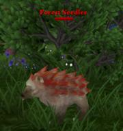 Forest Needler