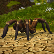 Brown Tarantula.png