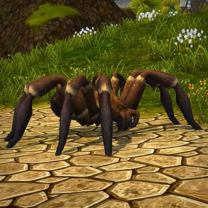 Brown Tarantula.png