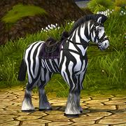 Zebra Horse.png