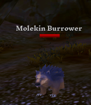 Molekin Burrower