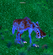 Drarg.png