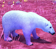 Sugarsweet polar bear.png