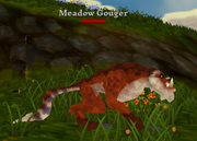 Meadow Gouger