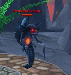 Drakata Grunt