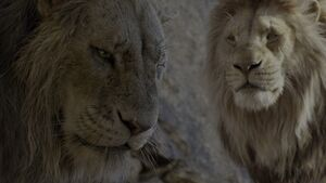 Scar Lion's Share