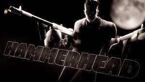 Introducing Hammerhead