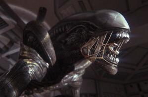 Alien-Isolation-6
