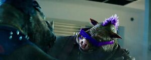 Bebop and Rocksteady (Out of the Shadows) 01