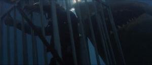 Jaws-movie-screencaps com-13570