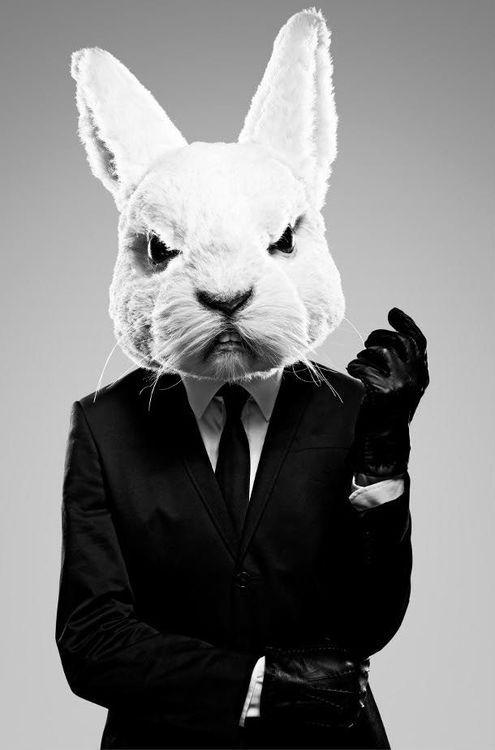 The Rabbit (Christina Henry's Alice)