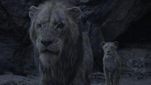 Lion King 2019 Screenshot 2803