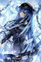Home-Decoration-Akame-Ga-Kill-Anime-Esdeath-90-60CM-Wall-Scroll-Poster-37442.jpg 640x640