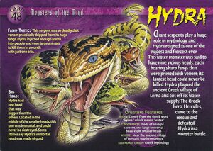 Hydra front