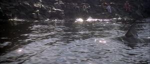 Jaws2-movie-screencaps com-13156