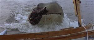 Jaws2-movie-screencaps com-12847