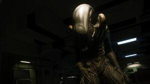 Alien-isolation-gallery-7