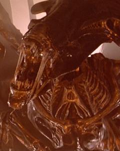 First Acheron Queenn