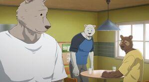 Riz anime 37