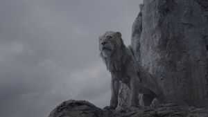 Lion King 2019 Screenshot 1512