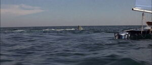 Jaws2-movie-screencaps com-10053