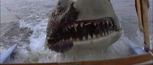 Jaws2-movie-screencaps com-12848