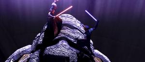 Asajj Ventress Skywalker back