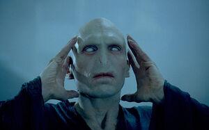 Voldemort 3435101b