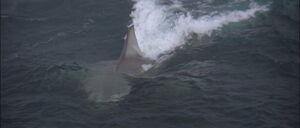 Jaws2-movie-screencaps com-8688