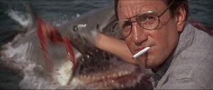 Jaws-movie-screencaps com-9600