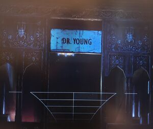 Dr. Penelope Young's Office
