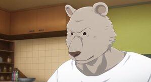 Riz anime 41