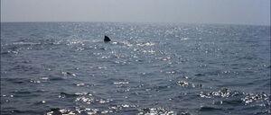Jaws2-movie-screencaps com-13053