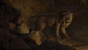 Lion King 2019 Screenshot 3131