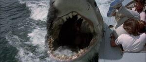 Jaws2-movie-screencap com-10039