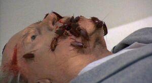 Mr pratt's death