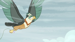 Roc Chrysalis struggles against wind again S9E8