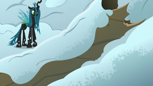 Chrysalis finds an overturned tree trunk S9E8