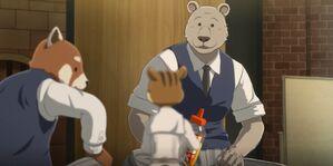 Riz anime 19